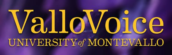 Vallo Voice header image