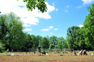 University Of Montevallo students cultivating pants in the Community Garden