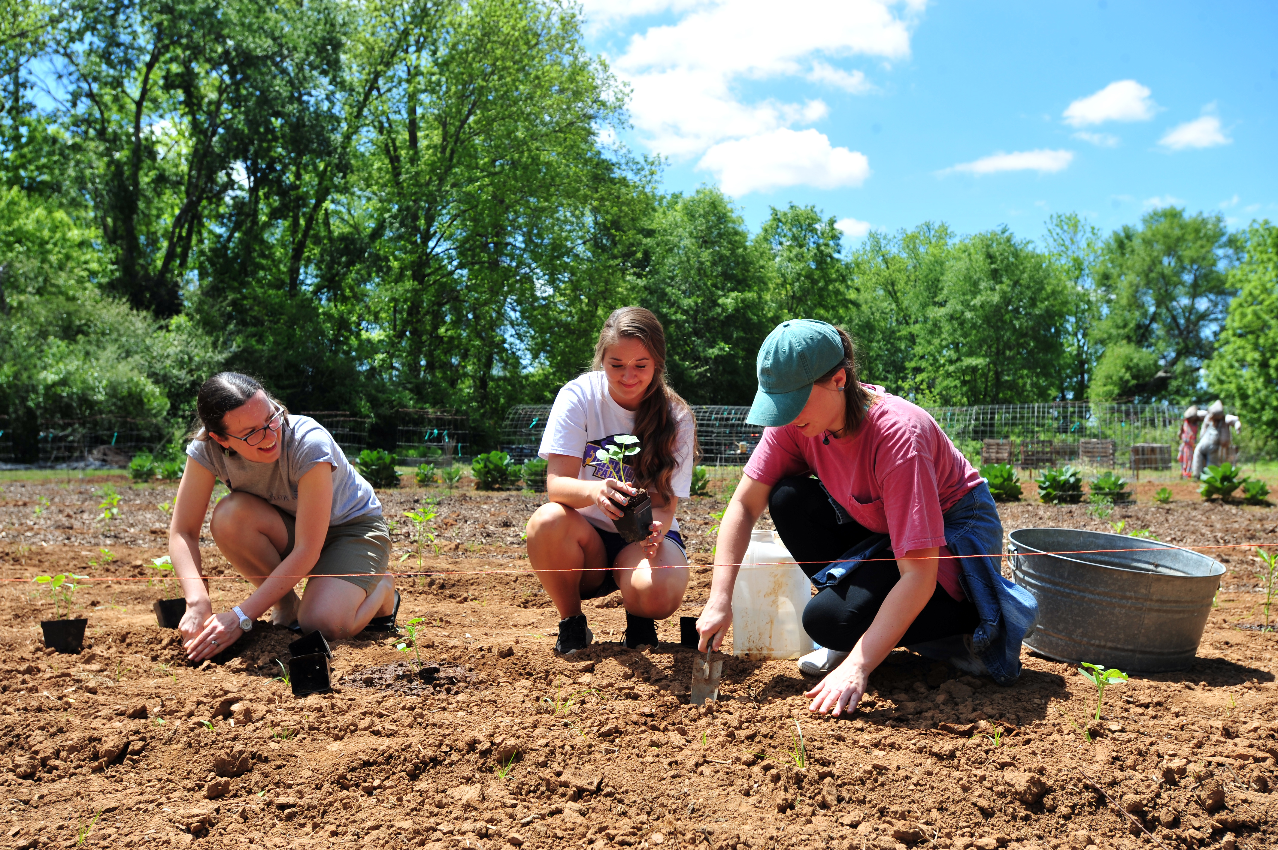 3 female students planting at the Community Garden