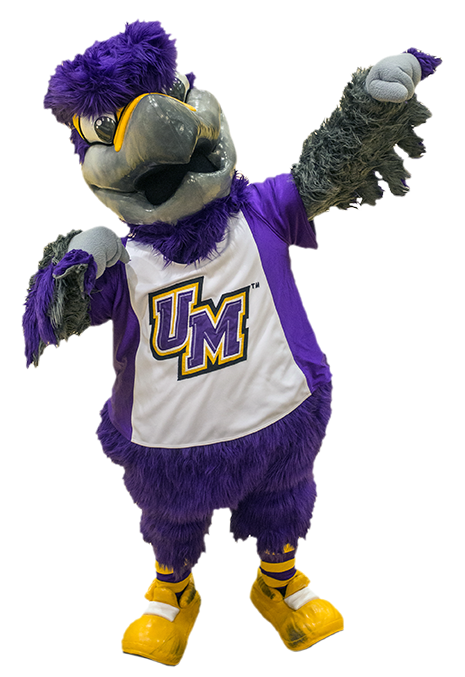 photo of Freddie the Falcon