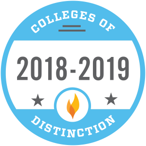 college-of-distinction-18-19-badge