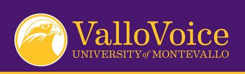 Vallo Voice