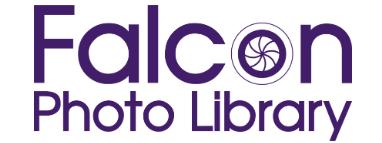 Falcon Photo Library