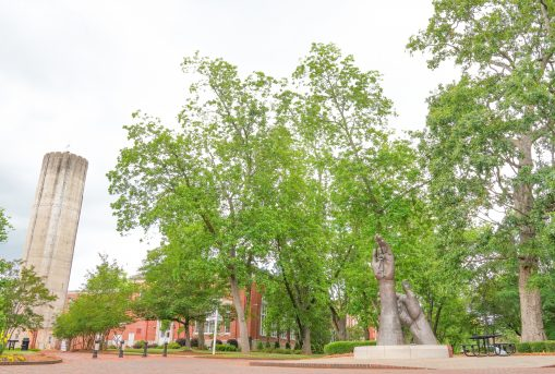 University of Montevallo campus.