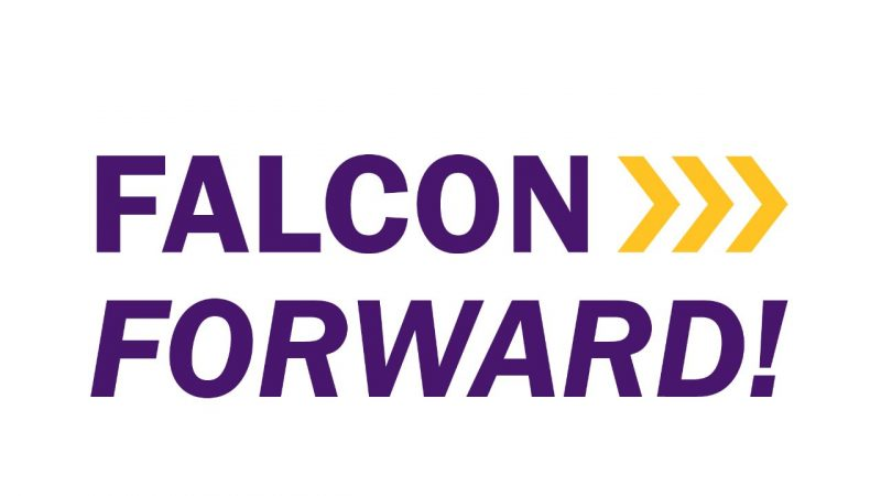 Falcon Forward Plan logo