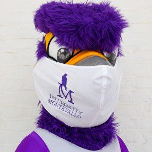 Freddie wearing a mask