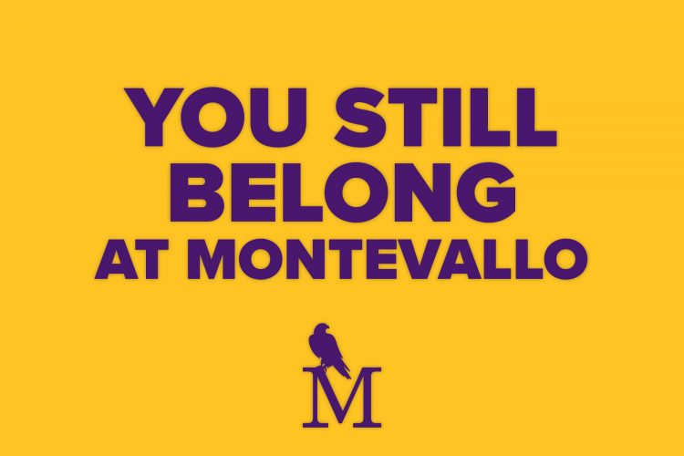 Graphic with the text You Still Belong at Montevallo and the Montevallo logo.